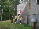 Ladder Rescue :: Ladders